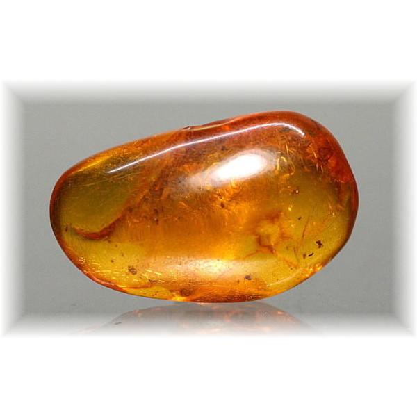 コロンビア産アンバー・琥珀 原石(AMBER-K804IS)